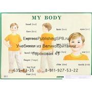My body / Строение тела человека. Наглядное пособие на английском языке для начальной школы