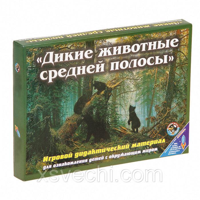 """Обучающая игра """"Дикие животные средней полосы"""" 1025"""