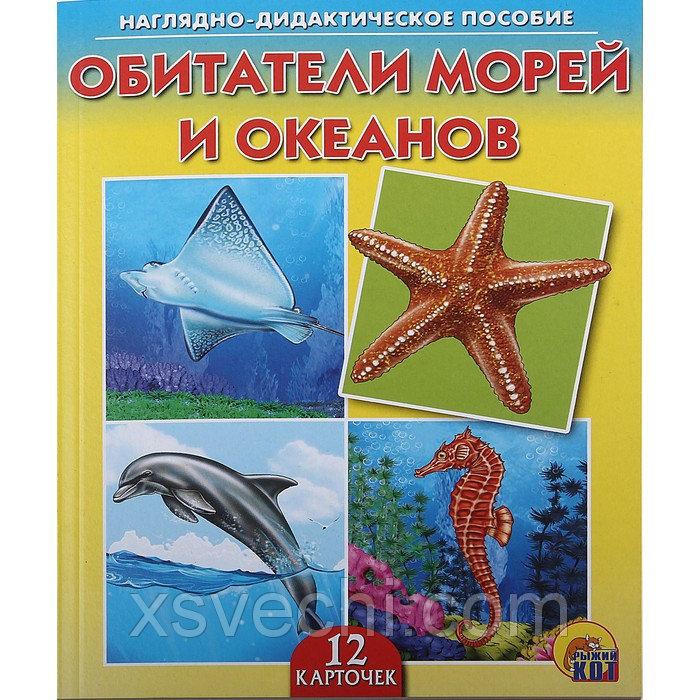 Дидактическое пособие «Обитатели морей и океанов», 12 карточек
