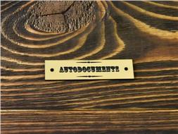 Шильдик пластиковый Autodocuments 5