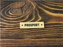 Шильдик пластиковый Passport 7