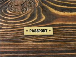Шильдик пластиковый Passport 5