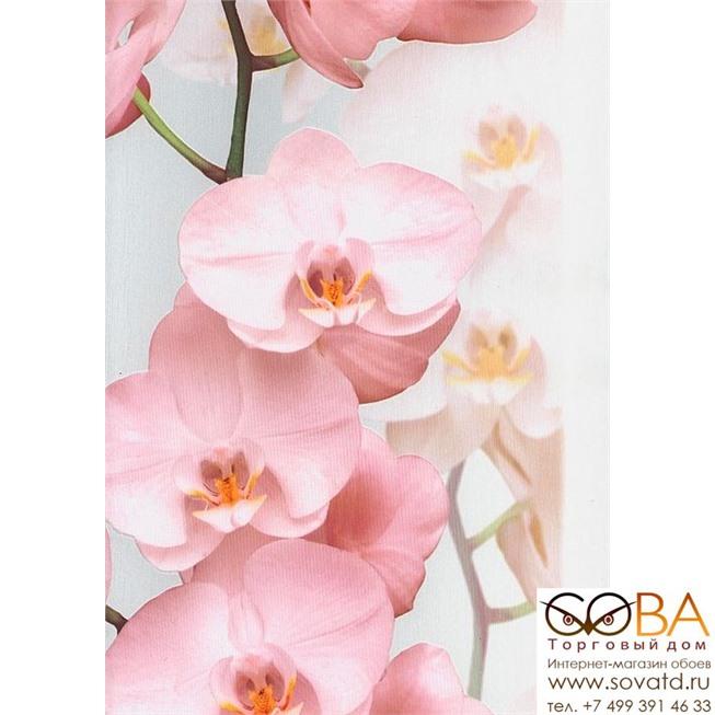 Обои Andrea Rossi Pianosa 54169-2 купить по лучшей цене в интернет магазине стильных обоев Сова ТД. Доставка по Москве, МО и всей России