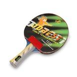 Ракетка для настольного тенниса Dobest BR01 4 звезды
