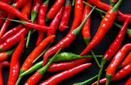 Перец Чили